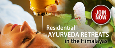 residential ayurveda retreats dharamsala